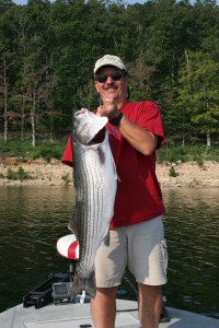 Hummingbird Hideaway Norfork Lake Arkansas Striper Fishing