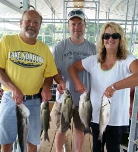 Hummingbird Hideaway Resort Norfork Lake Arkansas